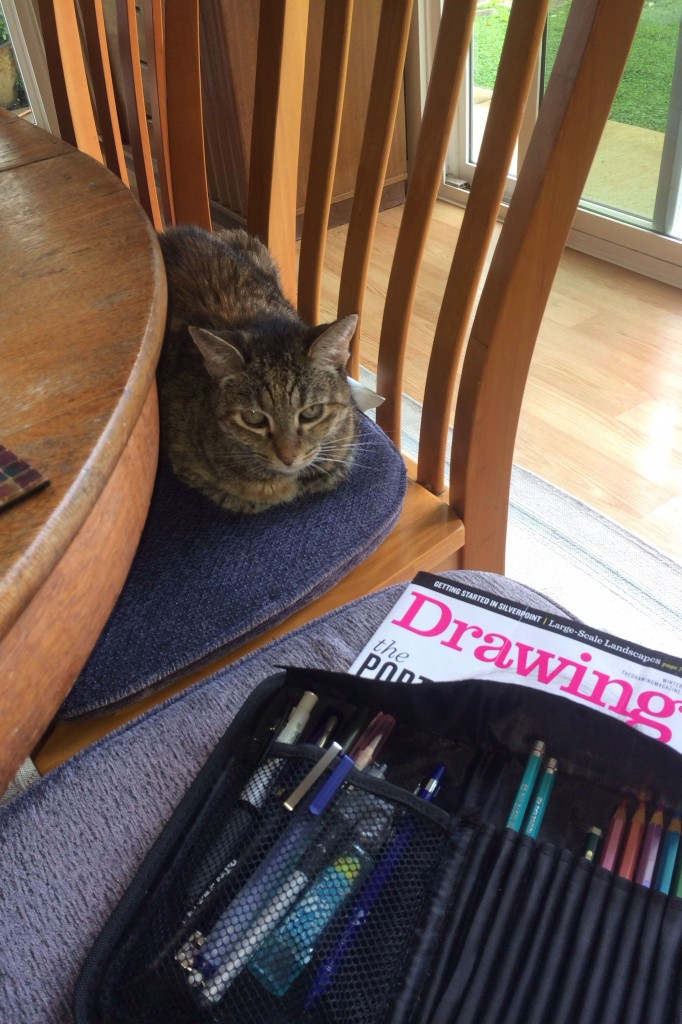 My editorial assistant and would be model, Velveteen